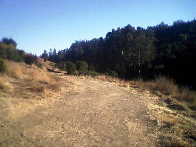 Grass Valley Trail