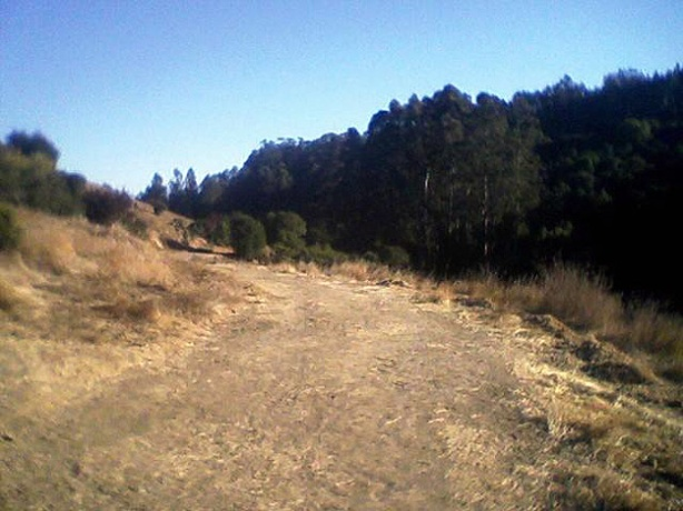 Grass Valley Trail