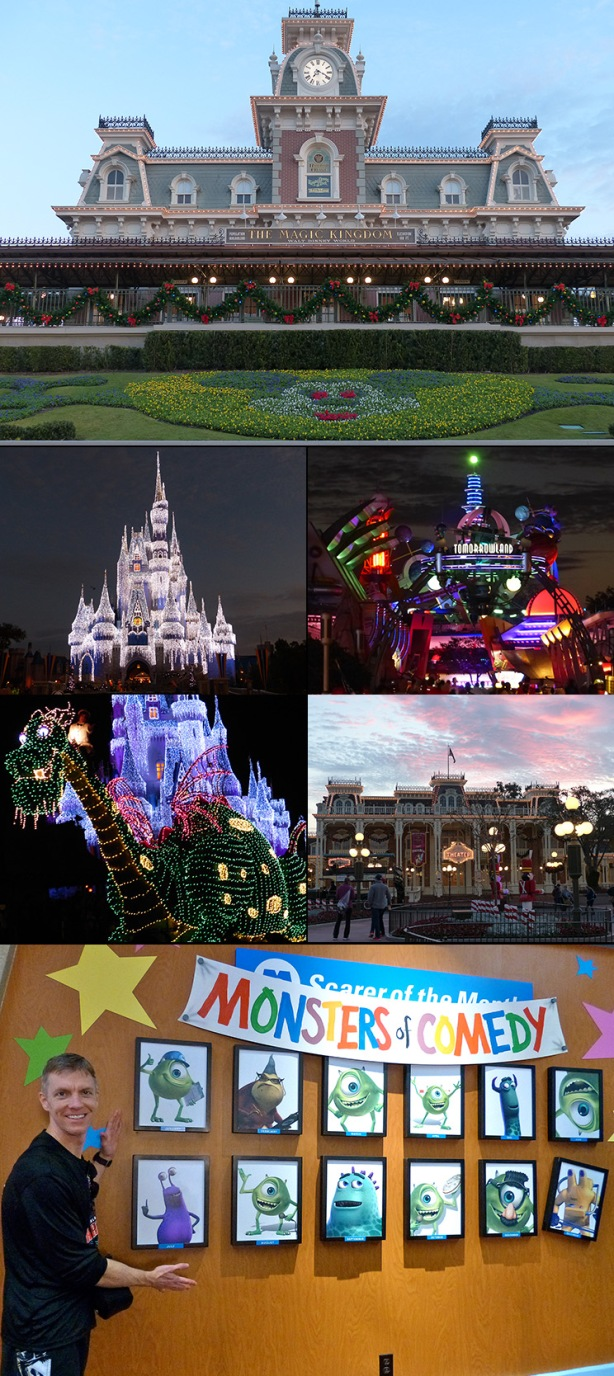 The Magic Kingdom Park collage