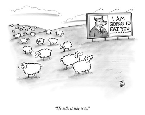 paul-noth_sheep