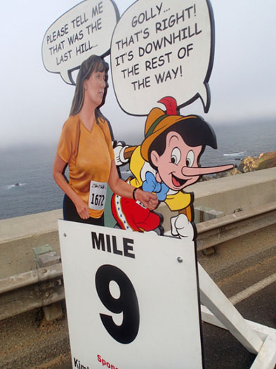 Big Sur mile 9 marker with pinocchio bch