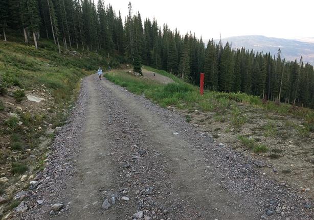 Storm Peak Challenge Trail (Run Rabbit Run)