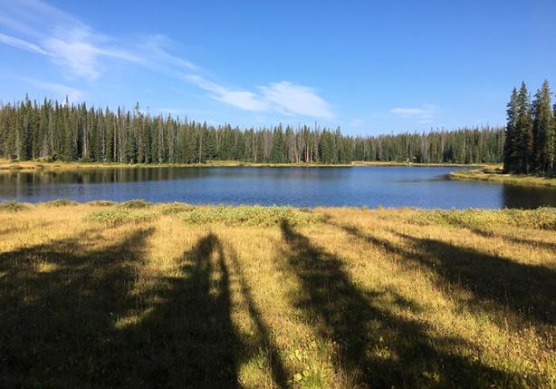 Lake Elmo (Run Rabbit Run 50, mile 16)