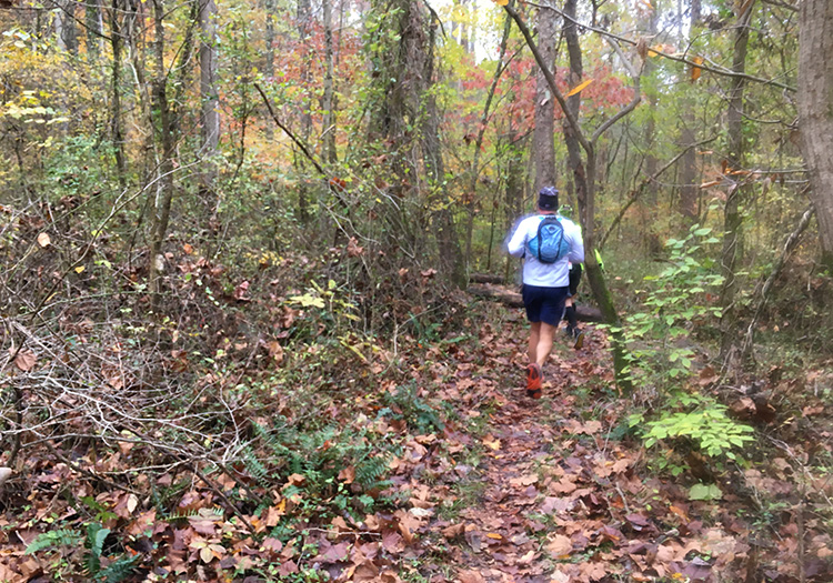 Tecumseh Trail Marathon mile 8