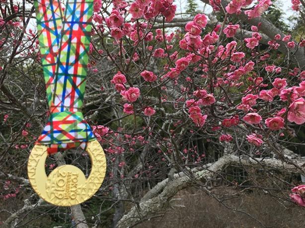 Tokyo Marathon medal against cherry blossoms