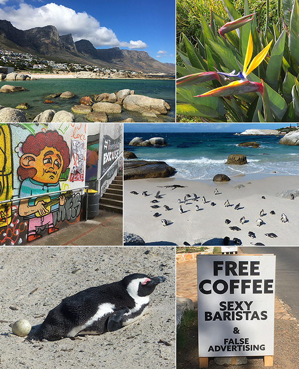 Scenes from Cape Town