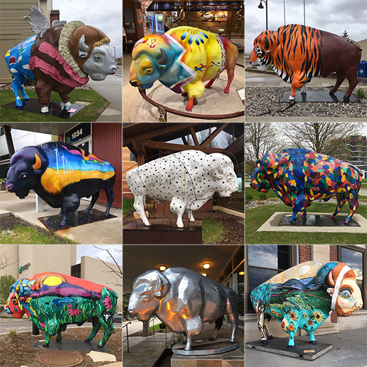Mike Sohaskey's collage of bison statues in downtown Fargo, from Herd About the Prairie